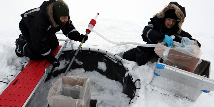 Kristine Toxværd's field experiments with crude oil were conducted using specially designed semi-open mesocosms deployed in sea ice at Svalbard. Photo: Line Reeh.